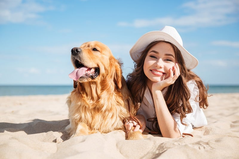 Pet Dentistry in St. Augustine FL